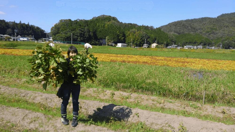 10月秋のツーリング@丹波篠山の黒枝豆を狩りに行く_0